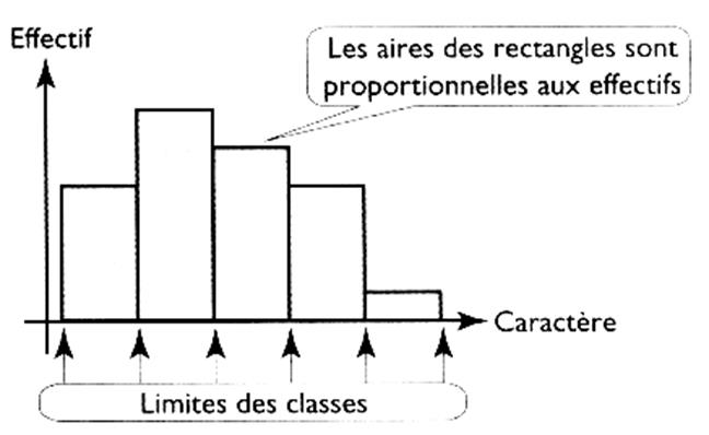 Histogrammes Construction Exercices Types