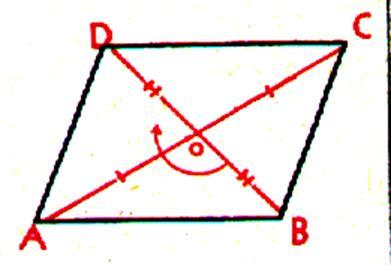 cotes adjacents égaux